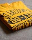 画像16: 1980s RUSSELL リバーシブルTシャツ  表記M
