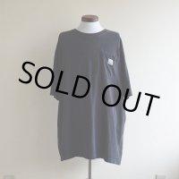 Carhartt ポケットTシャツ  表記XL